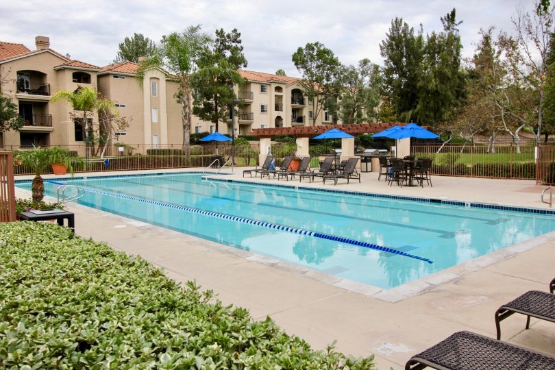 Private swimming pool for residents with a lap lane and ample space on the pool deck with mature trees in La Mesa