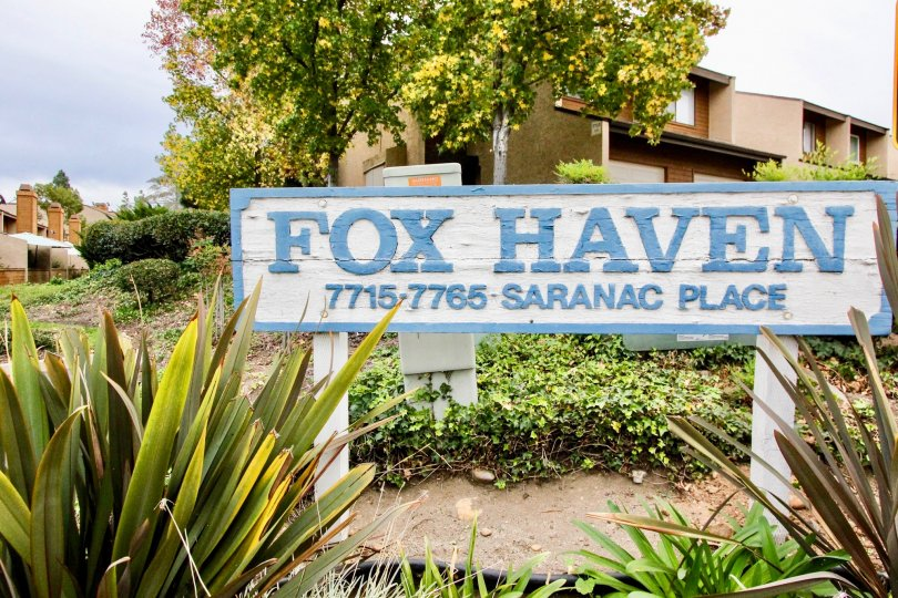A sign for the Fox Haven community surrounded by landscaping.