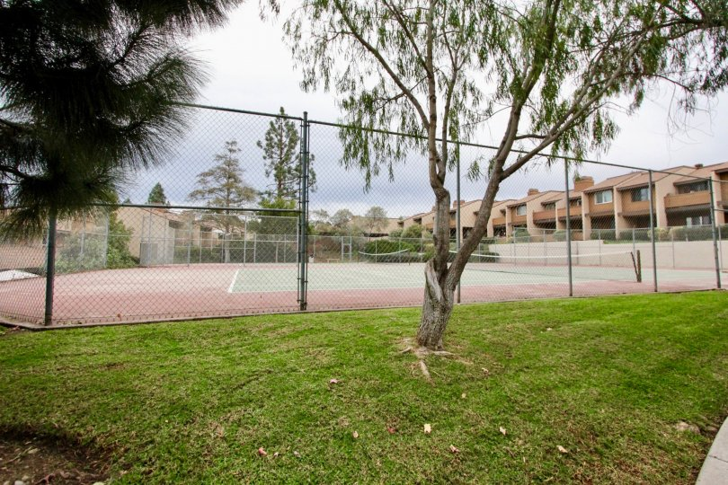 A public tennis court with a wire fence in the Fox haven community.