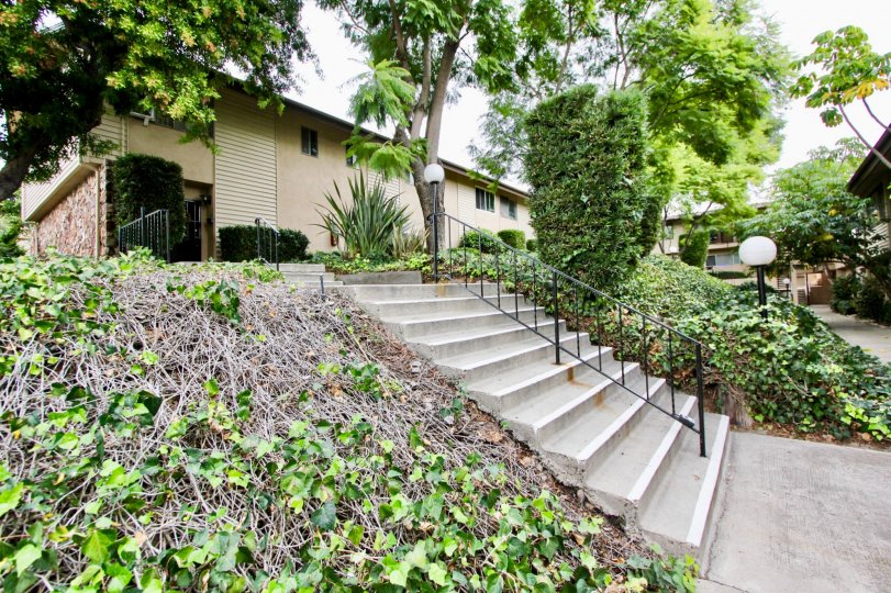 An entrance view with greenary of a villa in Grossmont Village of La Mesa