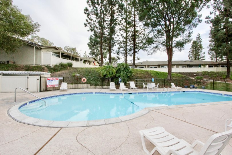 The La Mesa Racquet & Swim Club looks cool and fresh with tall trees around and a chair by pool side