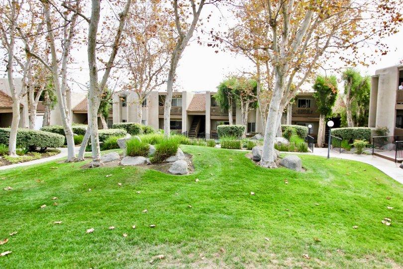 Greenish view of a lawn in front of Villas in La Mirianda of La Mesa