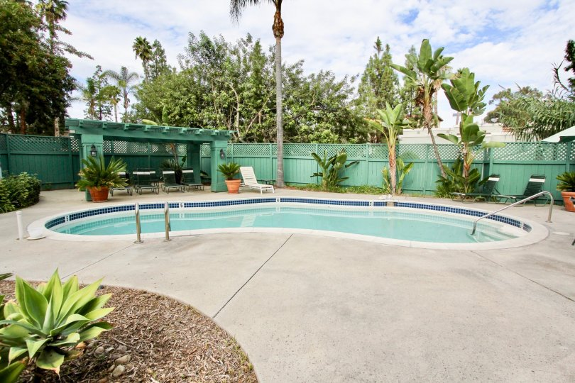 Fabulous swimming pool surrounded with trees in villas of Shasta Greens of La Mesa