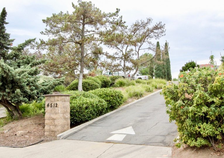 Villa Mesa Parks La Mesa California garden with road to drive in