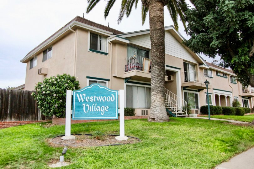 Condo n Westwood Village in La Mesa, Calofirnia, Has green grass and palm right in front yard