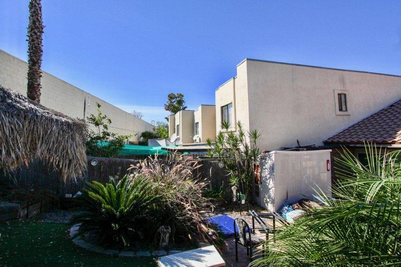 Black Mountain Villas,: Mira Mesa, California, blue sky,plants