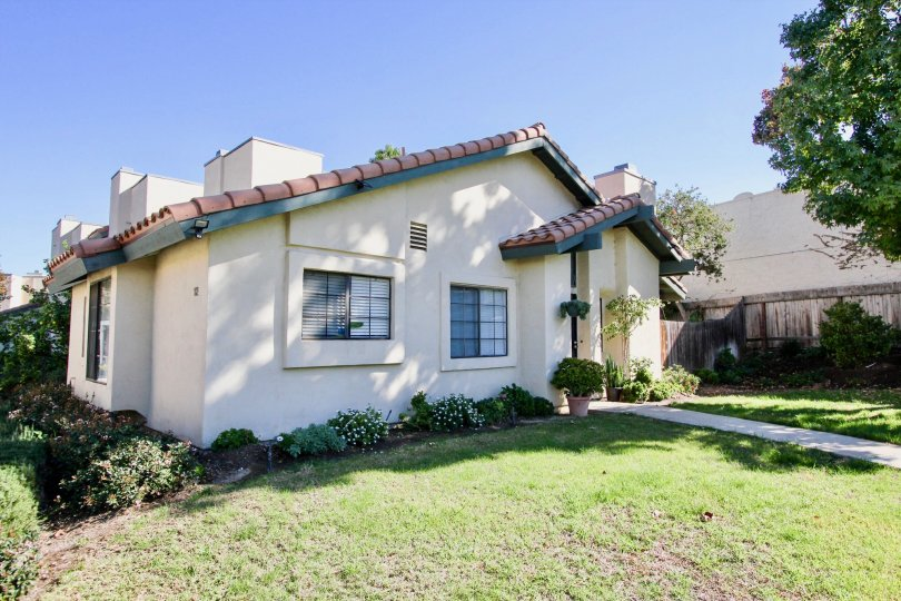 A Beautiful green lawn in front of Marvellous House with trees in Black Mountain Villas of Mira Mesa