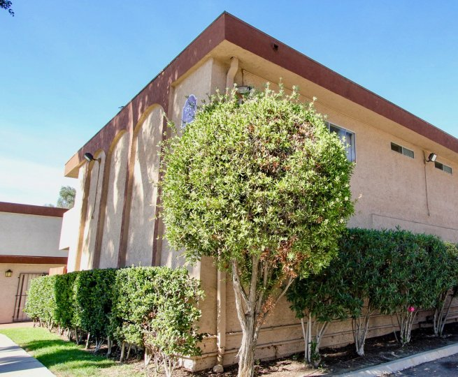 Carroll Canyon Gardens,Mira Mesa,California, beige building, tree