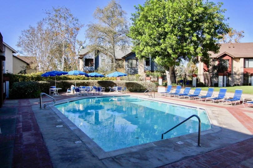 Poolside at the Concord Square Apartments located in Mira Mesa, California