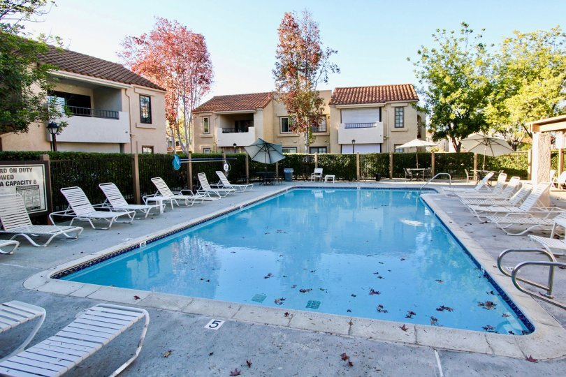 Swimming Pool Area of High ridge Community, Mira Mesa, California