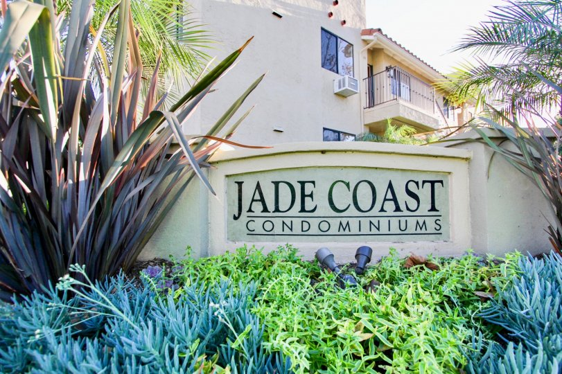 THE JADE COAST CONDOMINIUMS IN THE JADE COAST WITH THE PLANTS, TREE, AIR CONDITIONER, BALCONI