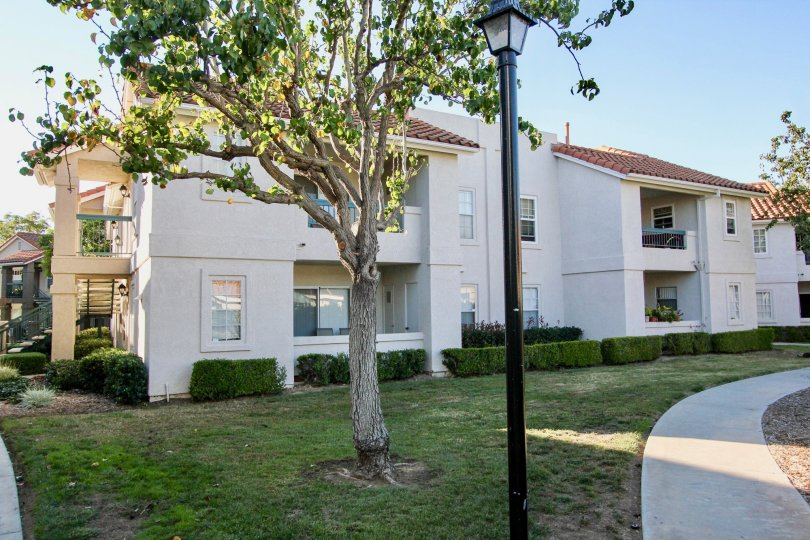 Summit Ridge apartments with it's well mowed lands and greenery in Mira Mesa, California