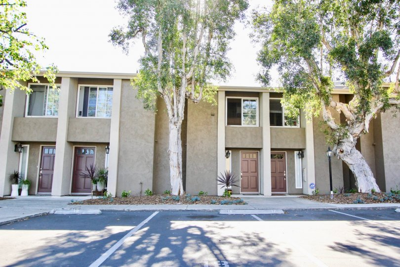 Windsor Park's simplicity and beautiful styled apartments in Mira Mesa, California