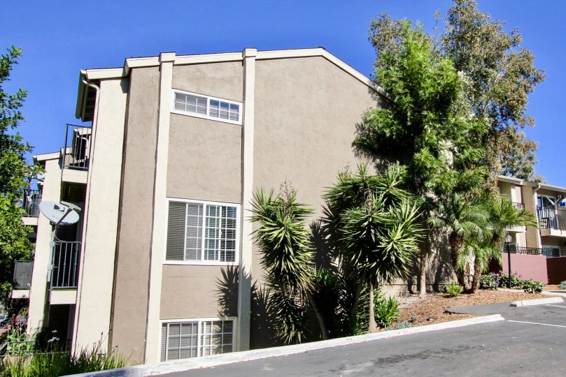 A Bright Sunny Day with green trees outside a House with road point in WIndsor Park with Mira Mesa