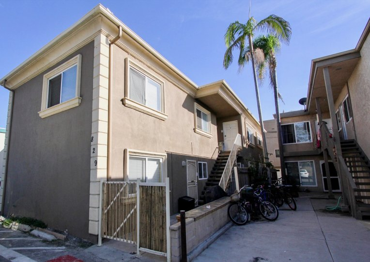 This shows the house and two coconut trees and the bicycles are there and wooden door were placed in the city of Mission Beach