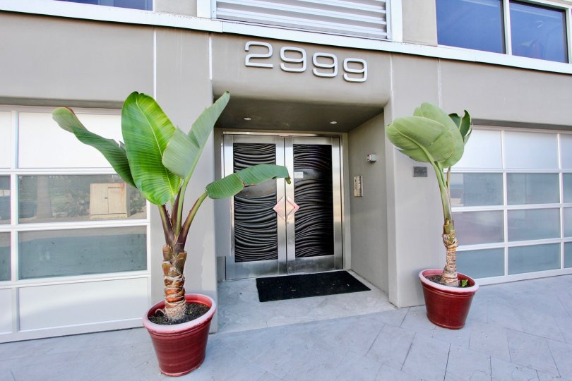 The welcoming entryway with potted palms at South Beach.
