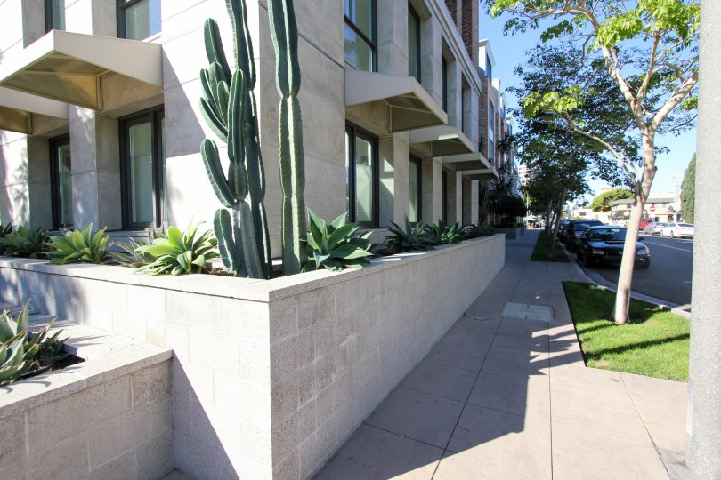 An apartment building with some cacti during a sunny day in 1Mission, Mission Hills, CA