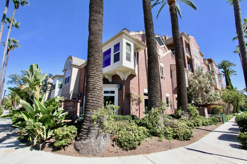 Beautiful landscapes with tall palm trees at gorgeous Cambridge Square in Mission Hills, CA