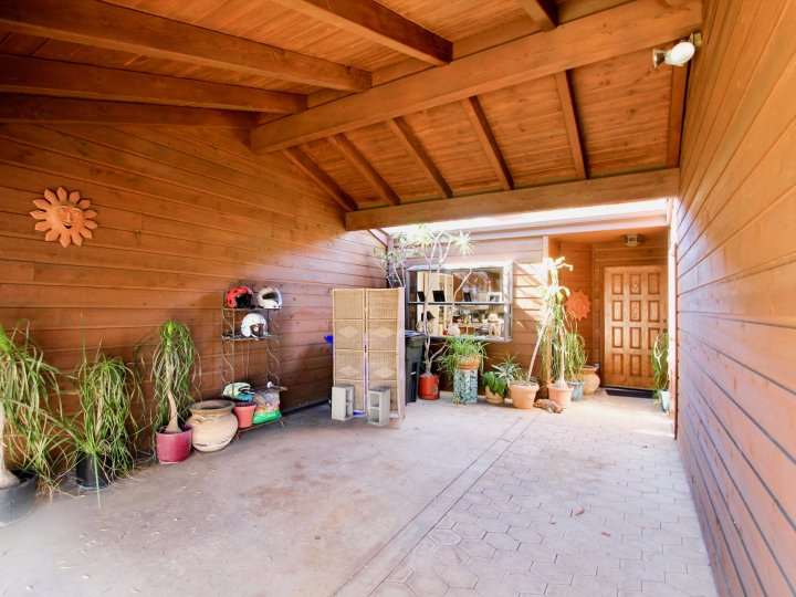 A sunny day in the area of Columbia Point, potted plants, garage, door, shelves