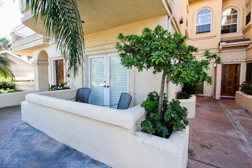 A sunny day in the area of Lewiston Condominiums, balcony, palm tree, condo