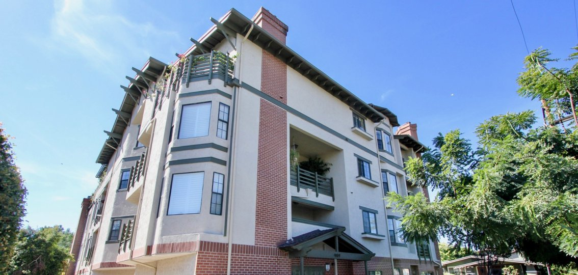 Apartment in the Sutter Canyon has flower pot and plants in the Balcony