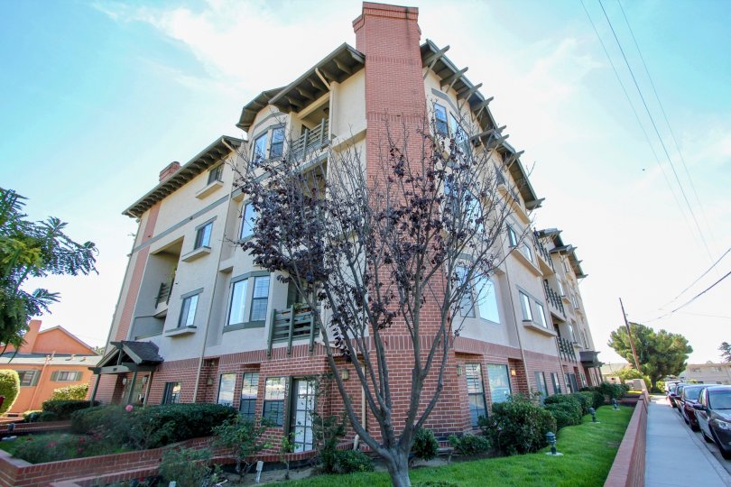The building Sutter Canyon is very height and large in size and has covered with garden