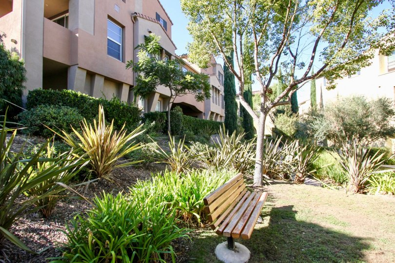 Bench in lush green area at Bridges at Escala in Mission Valley, CA