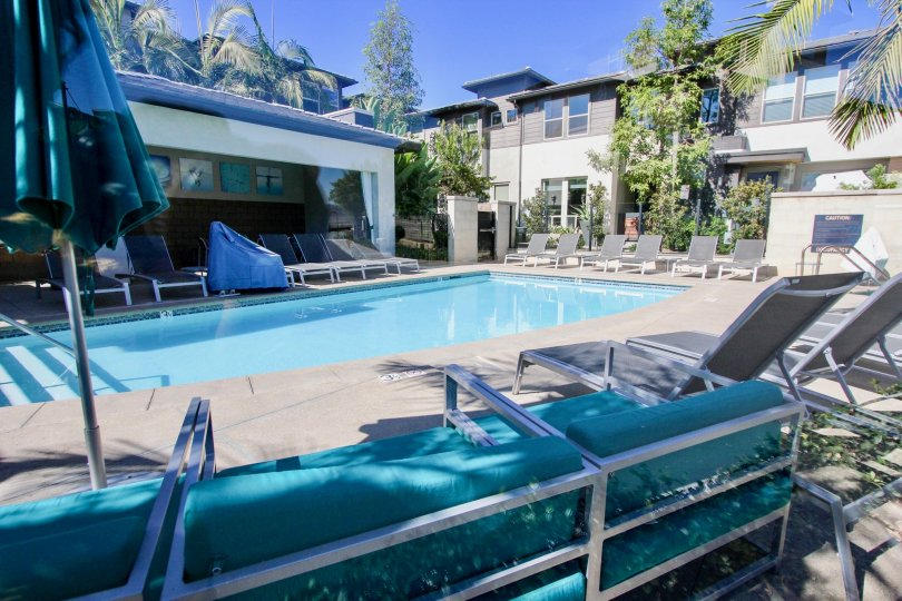 The luxury private swimming pool with deck chairs and beach umbrellas at the Frame and Focus condo complex.