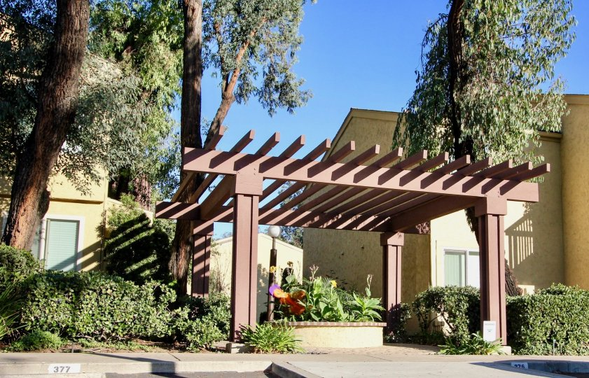 A lovely garden basks in a sunny day at Friars Pointe in Mission Valley California