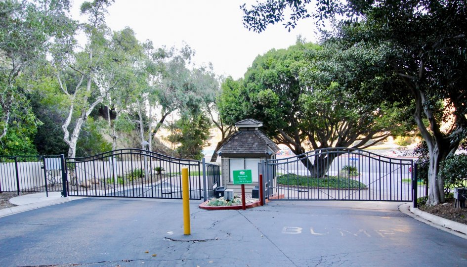 Tree lined driveway with front gate and guard hut leading to private parking area of Kensington Park Villas.