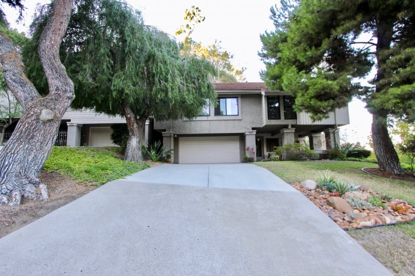 Drive way with nice trees in Kensington Park Villas Mission Valley California