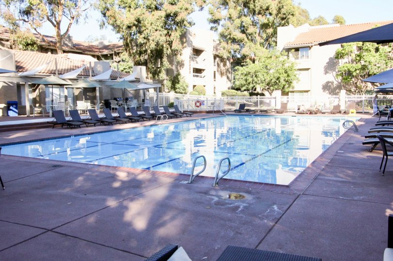 Mission Ridge Community Mission Valley California poolside apartments olympic sized pool shade tables and lounge chairs