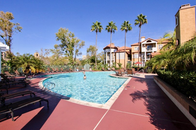 River Colon , Mission Valley,California,swimming pool,coconut trees
