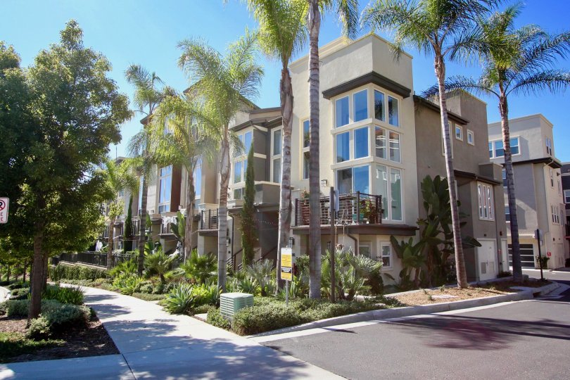 Skyloft at Origen , Mission Valley  , California,tall trees,apartment