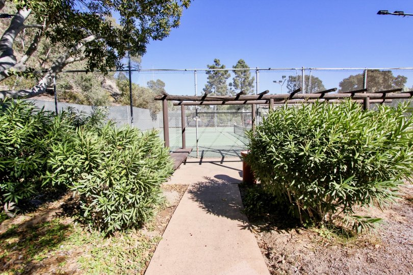 The Bluffs , Mission Valley  ,California,bushes,,pathway
