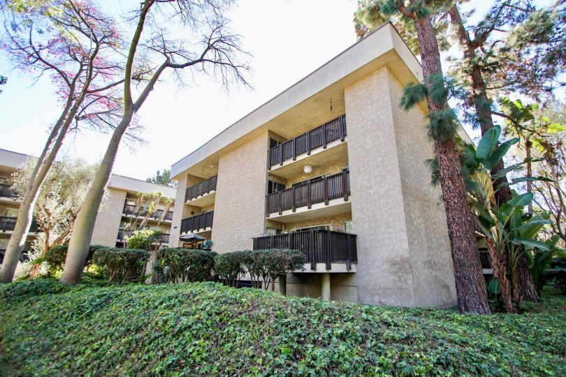 Outside view of The Bluffs building in Mission Valley, CA. Shrubs and trees surround the 3-story building. Another building in the background.