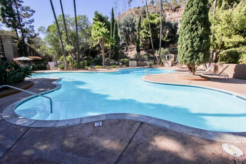 The beautiful swimming pool which has the lot of trees and chairs were situated in The Bluffs
