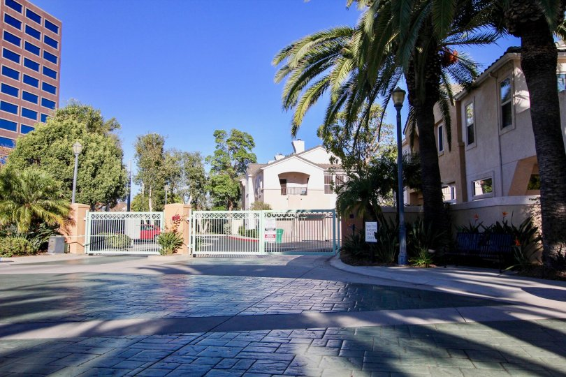 gated community corner with palm trees in union square in mission valley, CA