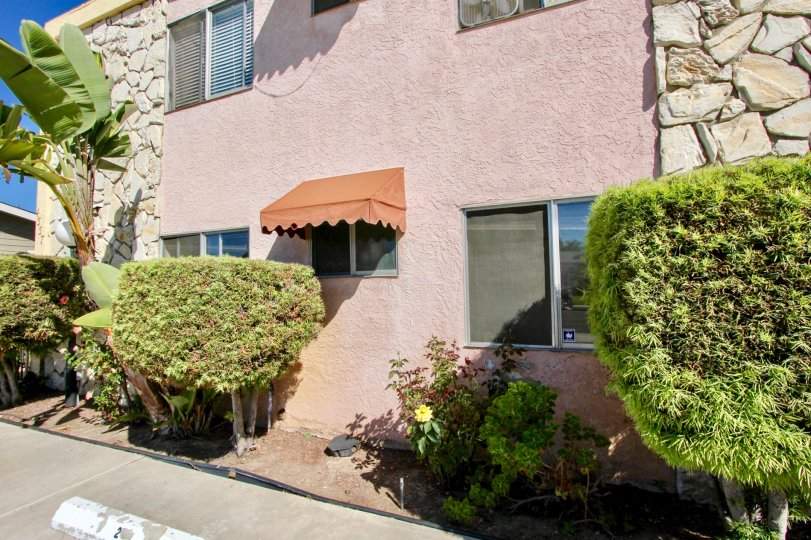 Side of apartment building at 33rd Street Manor with landscaping in Normal Heights, Ca.