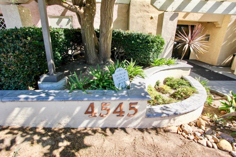 Landscaping and address at Plaza Arizona in Normal Heights, Ca.