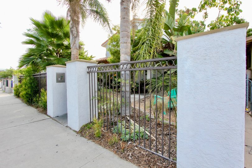 A sunny day in the area of 4166 Wilson Ave, Condo, fence, palm trees