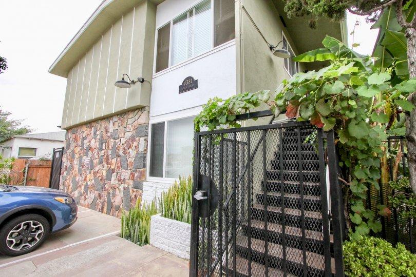 4381 Oregon St  , North Park  ,California, white sky,plants