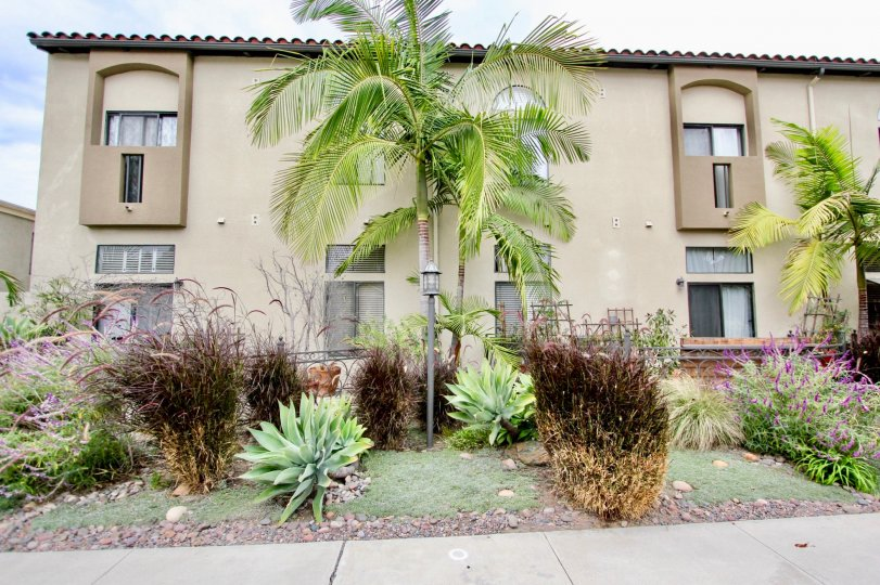 A beautiful apartment in North Park has a great garden.