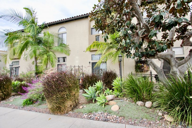 Front of house with several trees in front yard and plants in the Casa Balboa II