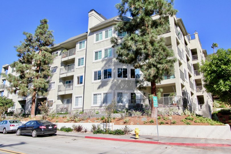 The Coventry Woods condominiums are located just north of Balboa Park, 10 minutes away from downtown San Diego, CA. When this southern California Condo Owner Association was in need of re-painting their 43 units at Coventry Woods, they called the trusted