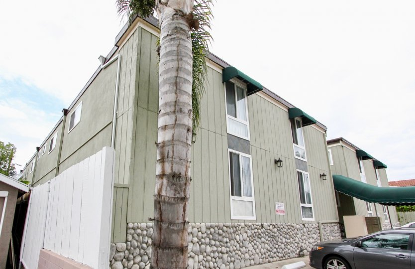 Mississippi Townhomes community North Park California palm trees stone facing green windows awning over entrance and windows fence