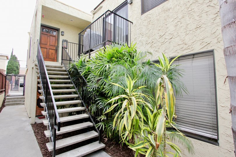 Oregon Street, North Park, California, plants, stairs, 2nd story