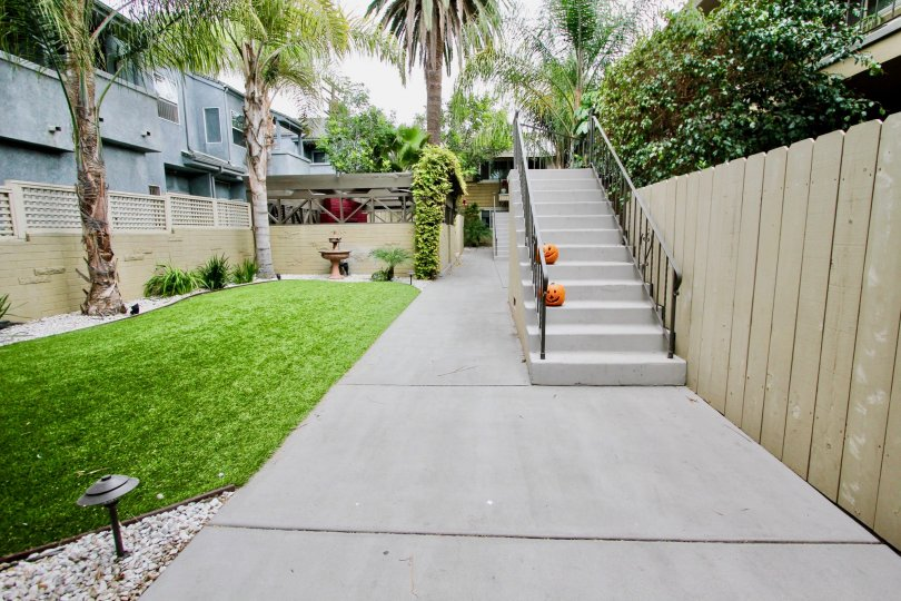 Pacific Palms  ,North Park, California, white steps, lawn