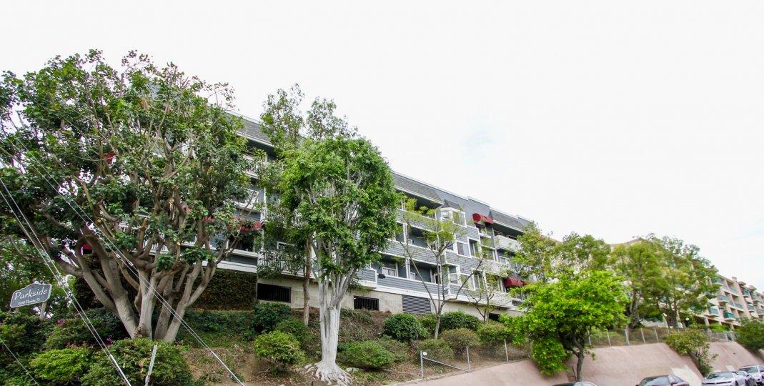 Parkside, North Park ,California,grey building,trees