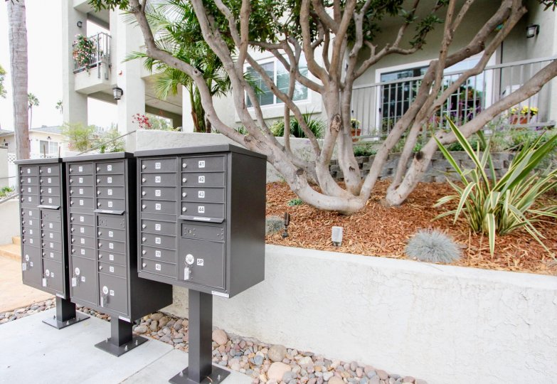 A sunny day in the area of Wilshire on the Park, mailboxes, tree, fence, condo